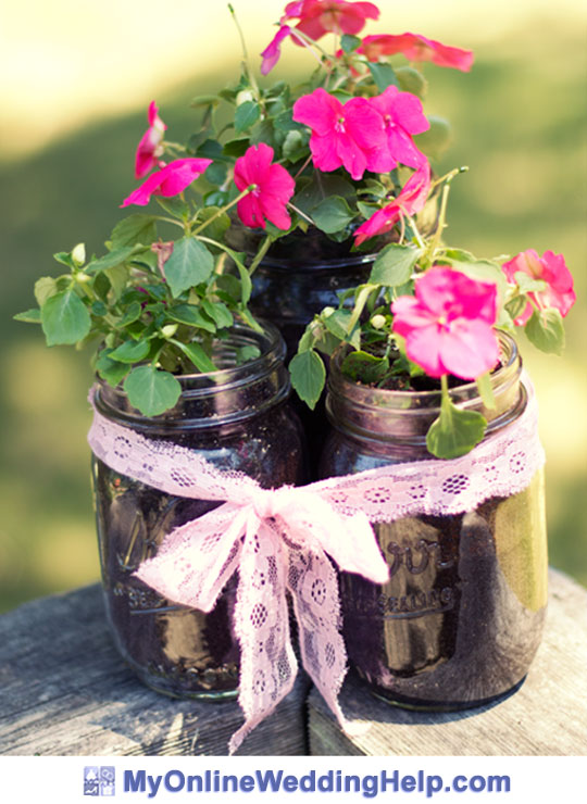 Idea for using live plants in mason jars as double duty wedding centperpieces and favors.